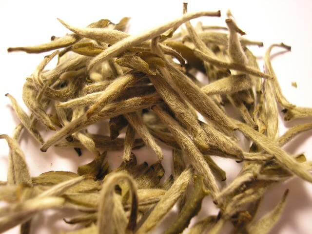 Types of tea - white tea