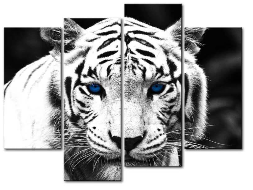India animals symbol