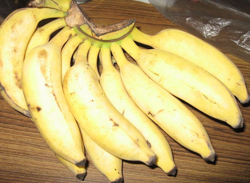 India fruit symbol