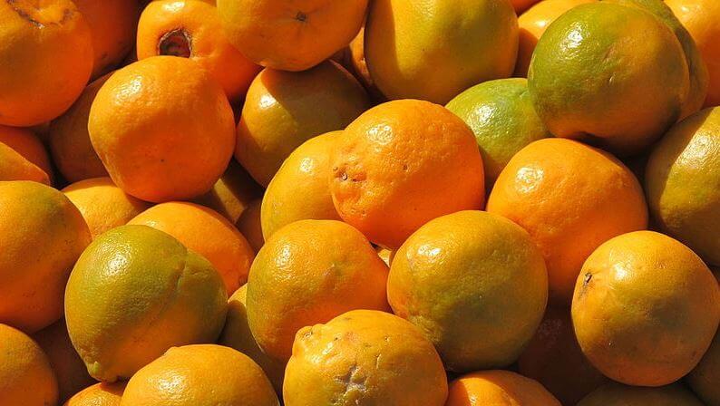 India fruits symbols