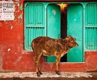 India business etiquette