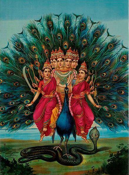 hindu lucky symbols Peacock