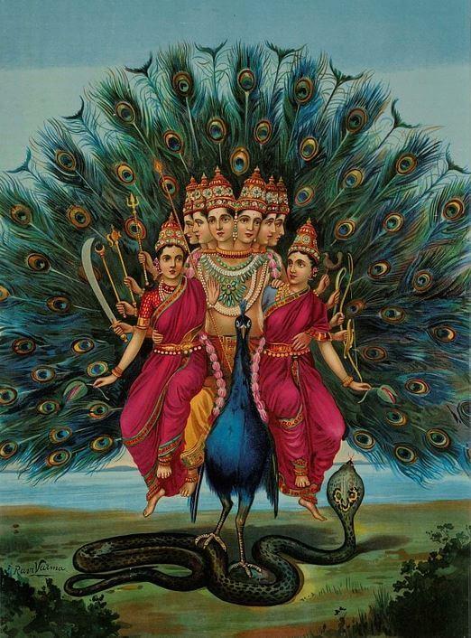 Peacock symbol in India