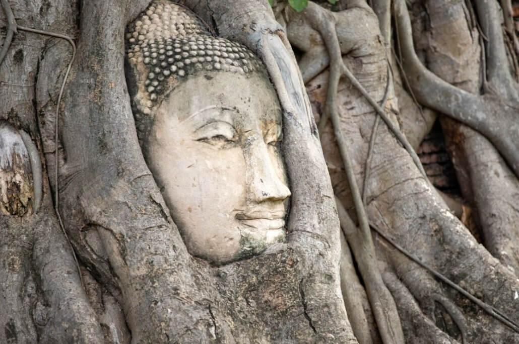 Buddhist symbols - The bodhi tree