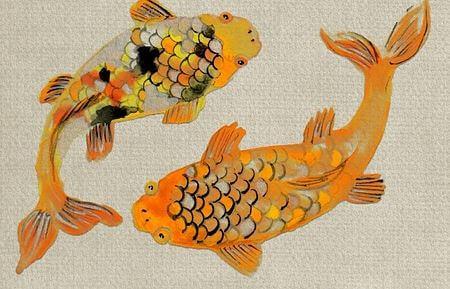 Two golden fish Buddhism symbol